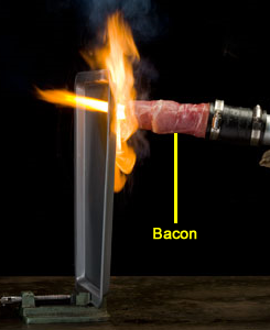 bacon-thermal-lance.png